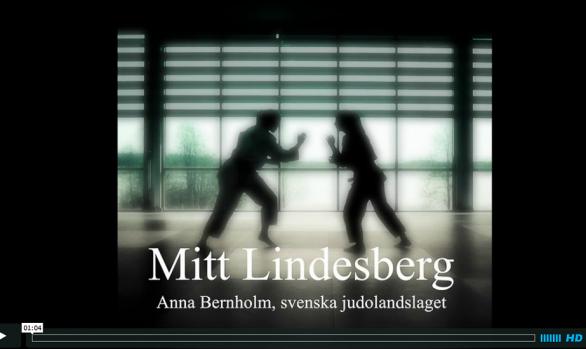 Mitt Lindesberg no 2